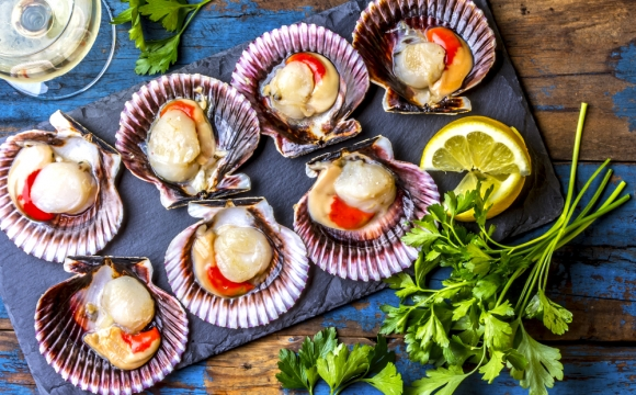 10 spécialités de Noël dans le monde - La coquille Saint-Jacques, France