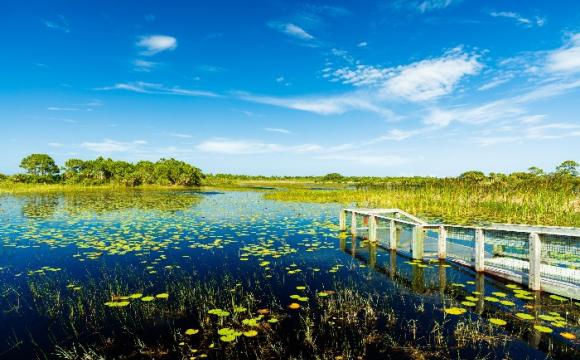 Les 15 plus beaux paysages des Etats-Unis - Les Everglades