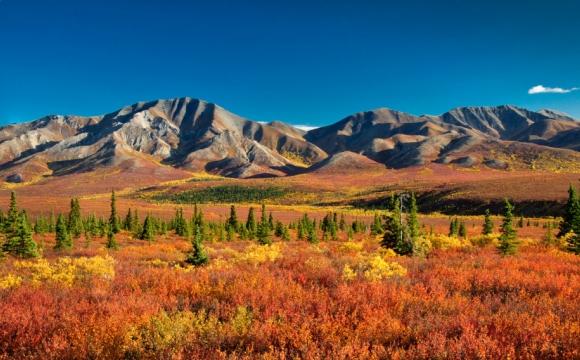 Les 15 plus beaux paysages des Etats-Unis - Denali