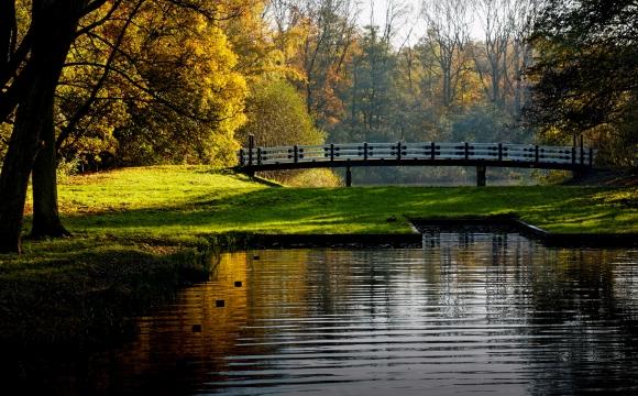 10 activités gratuites à faire à Amsterdam - Le parc boisé Amsterdamse Bos