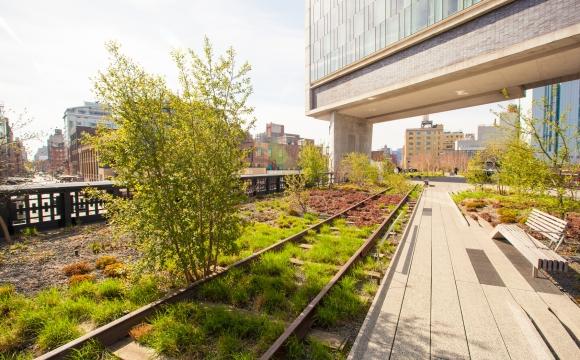 10 activités gratuites à faire à New-York - Se promener sur la High Line