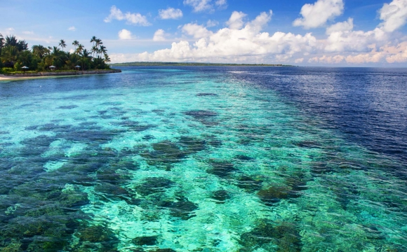 12 endroits pour nager dans l'eau turquoise - Wakatobi