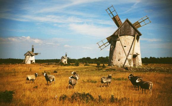 10 visites incontournables en Suède - L'île de Gotland