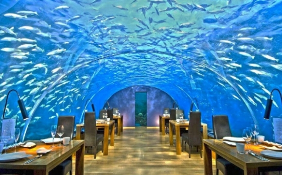 10 restaurants insolites qui font rêver - Le restaurant Ithaa Undersea, Maldives