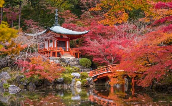 10 idées de voyage pour se ressourcer - Japon, découvrir l'art de vivre culinaire