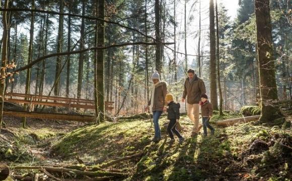 Pourquoi Center Parcs est la destination idéale pour des vacances en famille ?  - 2) Pour se ressourcer, en harmonie avec la nature