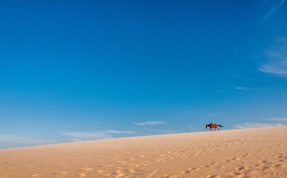 10 activités à faire à Djerba ! - Les balades à cheval