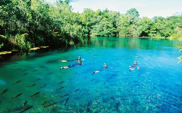12 endroits pour nager dans l'eau turquoise - Bonito, Mato Grosso do Sul