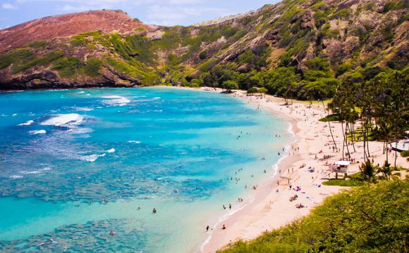 Erreur de tarif : Hawaï à partir de 327€ AR/personne !