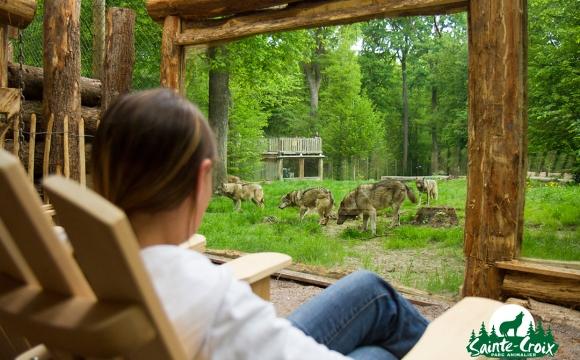 10 hôtels insolites en France - Dormez avec les loups
