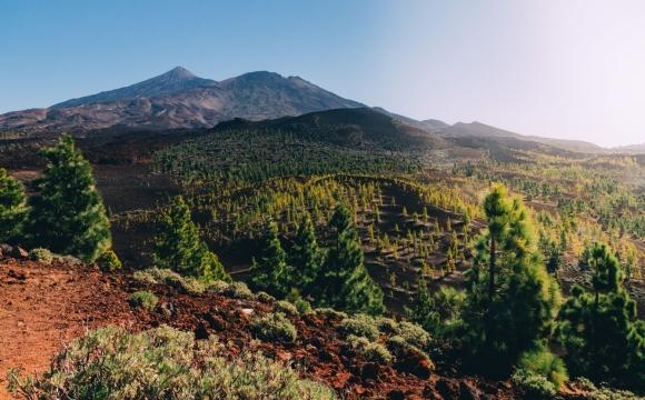 5 bonnes raisons de partir à Ténérife  - Des activités indénombrables