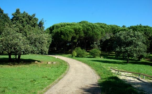 10 activités gratuites à faire à Lisbonne - Profitez des parcs et des jardins
