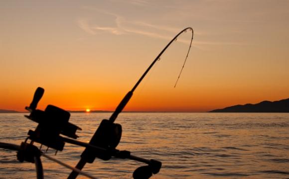 Quelques idées d'activités insolites à faire en Corse