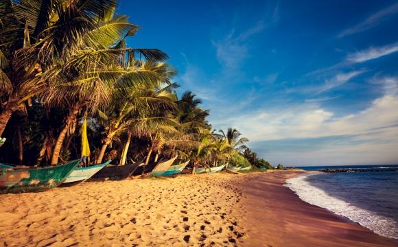10 voyages à faire en couple - Les parcs naturels au Sri Lanka