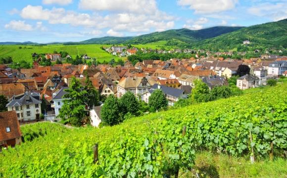 Les 10 plus belles routes de France - La route des Vins d'Alsace
