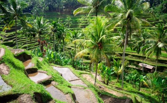 10 raisons de visiter Bali - Des paysages hauts en couleurs
