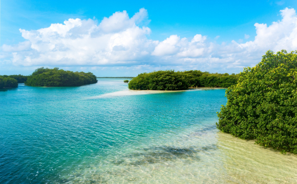 10 excursions incontournables à faire au Mexique