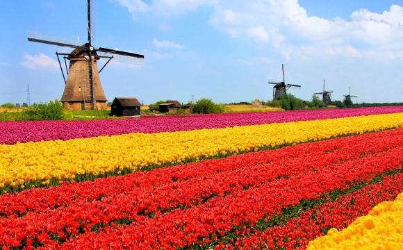 Top 10 des destinations les plus colorées du monde - CHAMPS DE TULIPES, Pays-Bas