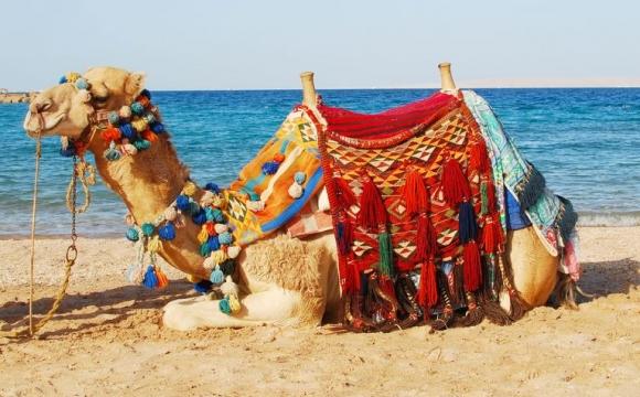 5 destinations pour passer Noël au soleil  - Djerba