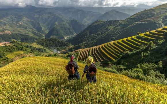 Top 10 des destinations pas chères, pour voyager sans se ruiner !  - Le Vietnam