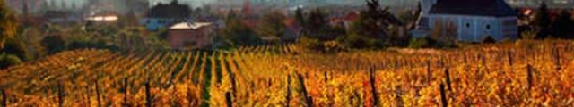 Wonderweekend : escapades gourmandes 4*, Bourgogne, Provence & Touraine