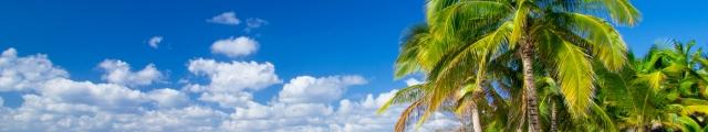 Go Voyages : séjours îles de rêve, Guadeloupe, Sri Lanka, Saint Martin...