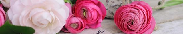 Weekends Picardie : escapades en chambres d'hôtes pour la St Valentin