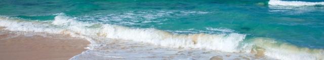 Ecotour : séjours 8j/7n en dernière minutes, Tunisie, Canaries...