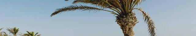 Clubs Marmara : séjours tout compris aux vacances de la Toussaint, - 17%