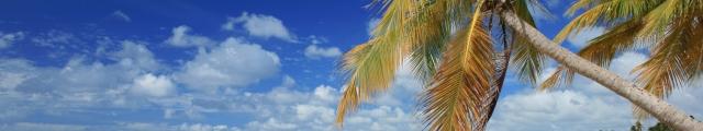 Nouvelles Îles : séjours en locations dans les Caraïbes, voiture incluse, à prix minis