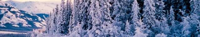 Locasun VP : ventes flash Alpes, 8j/7n en résidences 3* proches des pistes, dispos Noël et Nouvel An