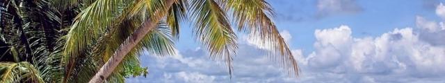Go voyages : séjours îles de rêve à - de 700 €, jusqu'à - 36%