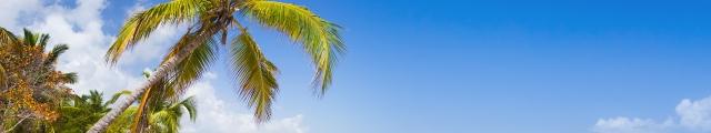 Promovacances : séjours 8j/7n ou 9j/7n au soleil cet hiver, - 43%