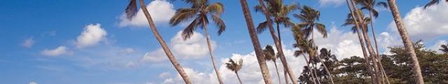 Promovacances.com : séjours sur les îles de rêves