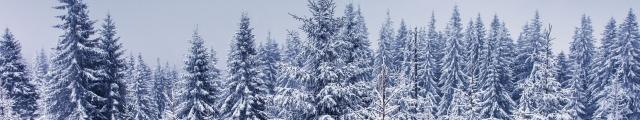 Ski Alpes : vente flash, locations 8j/7n en résidence 3*, - 51%